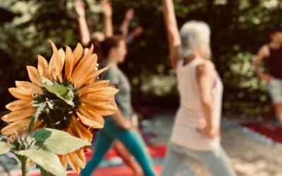 Soma Yoga Sommer Newsletter 2020!