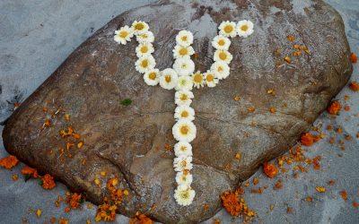 Om Namah Shivaya- Soma Yoga News März 2021